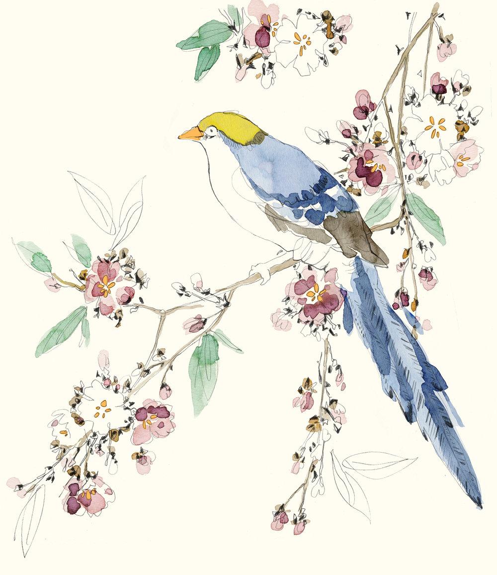 Bird Florals.jpg
