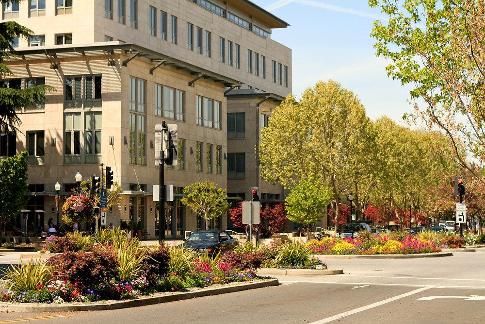 Downtown+Mountain+View-2-X2.jpg