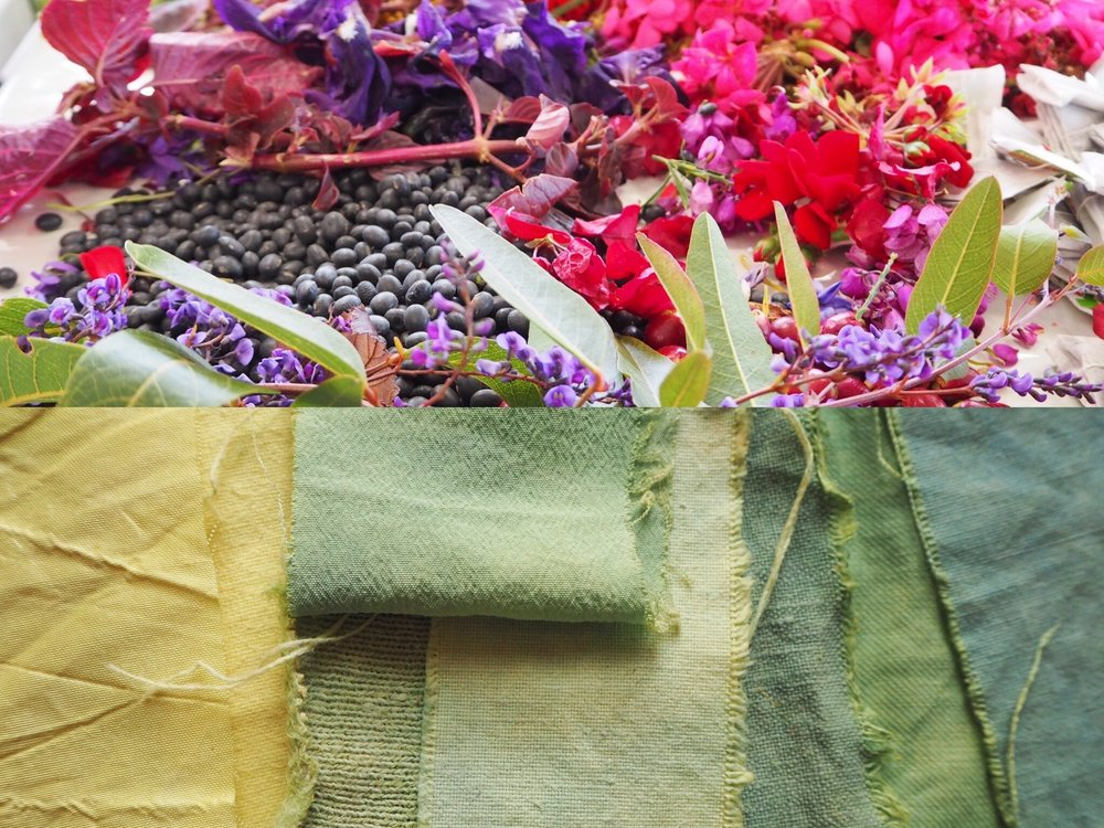 2019_What--Makes_Natural Dye Colours 7.jpg