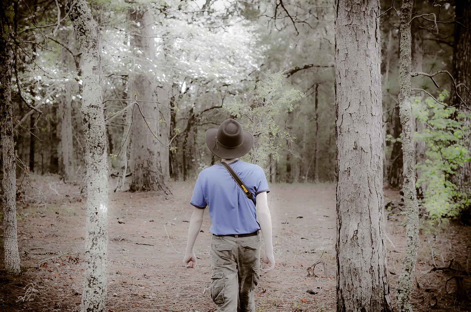 Photowalk in the Woods