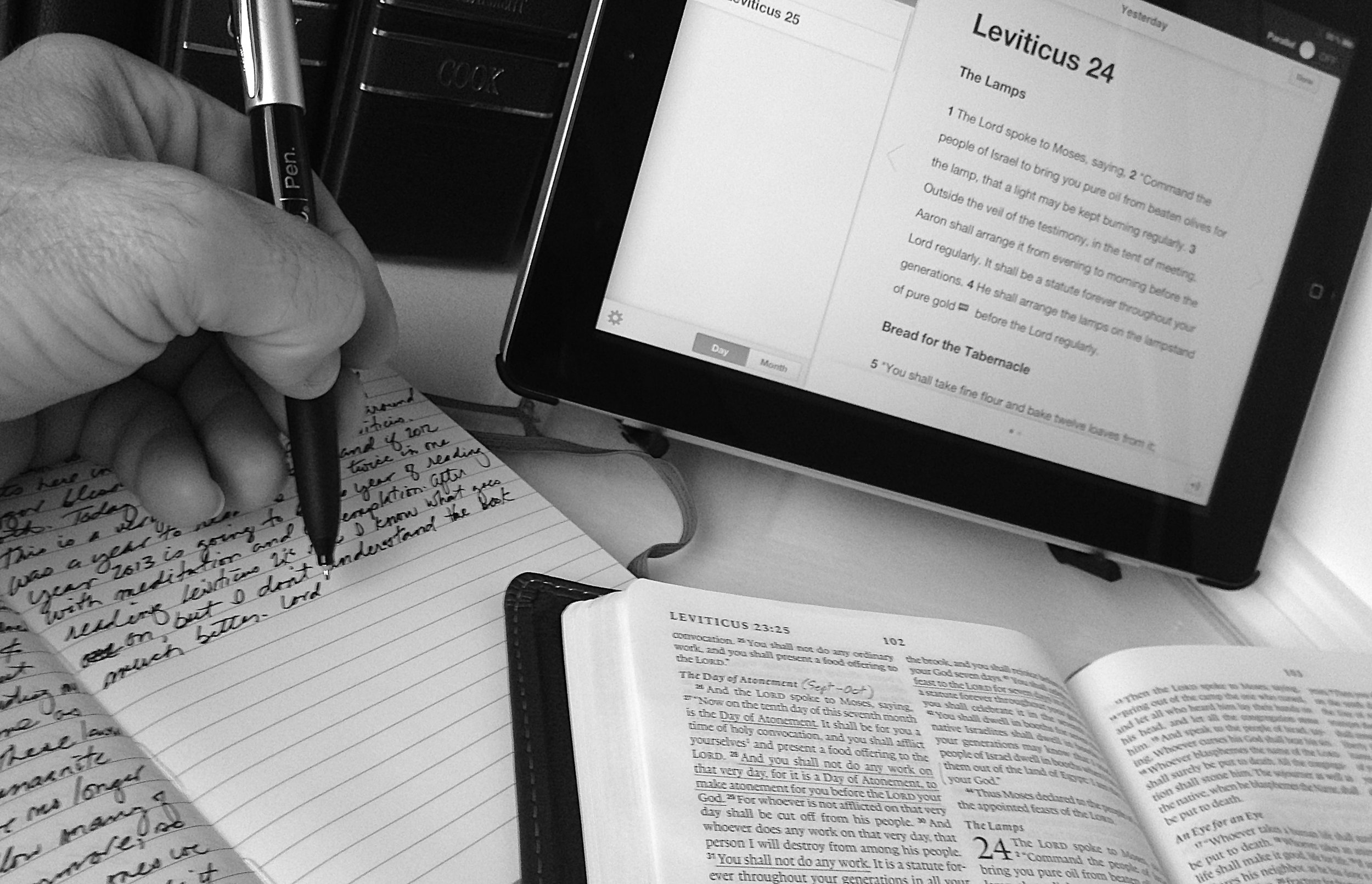 Studying the Book of Leviticus