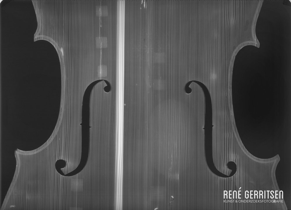 RG-Camille-Dolibeaux-ray-Cello-4-front-2-2.jpg