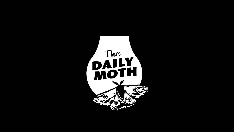 Supreme Court Justice Ruth Bader Ginsburg Passes Away At 87 The Daily Moth