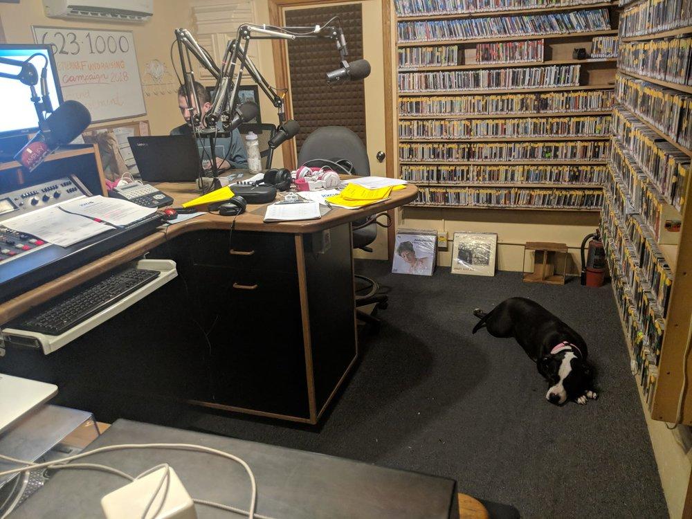 91.3 KXCI Station (& my pitbull Millie)