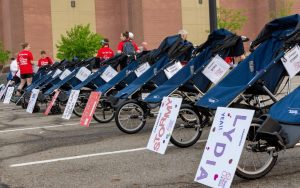Gear - wheelchairs all lined up before the race
