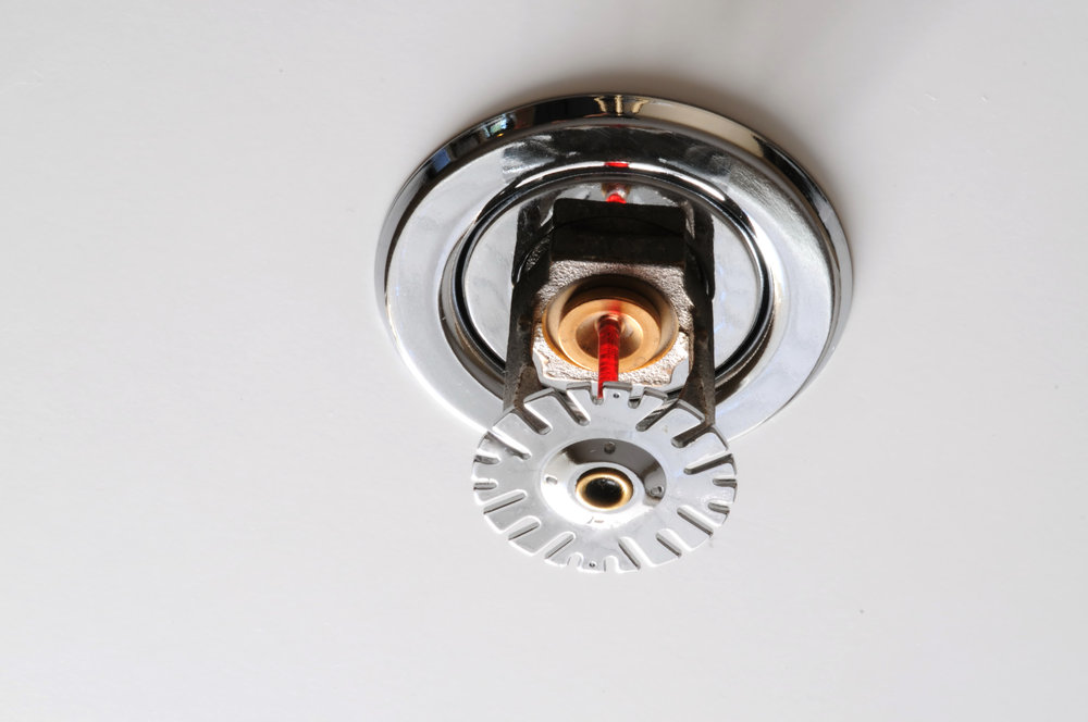 About - Protecting Lives And BusinessesWe offer a wide variety of fire sprinkler and fire alarm services. We have everything you need for your project.