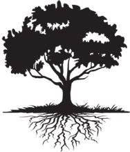 tree-with-roots.png