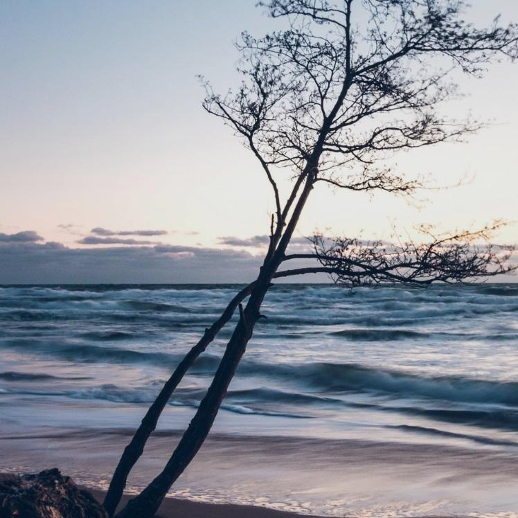 BAD - KNÄBÄCKSHUSENKnäbäckshusen – otroligt fin sandstrand söder om Kivik, i närheten av Stenshuvud Nationalpark. Väl värd ett stopp för den som tycker om att bada eller bara gillar en fin vy. Tips inskickat av: www.instagram.com/malin.ahr