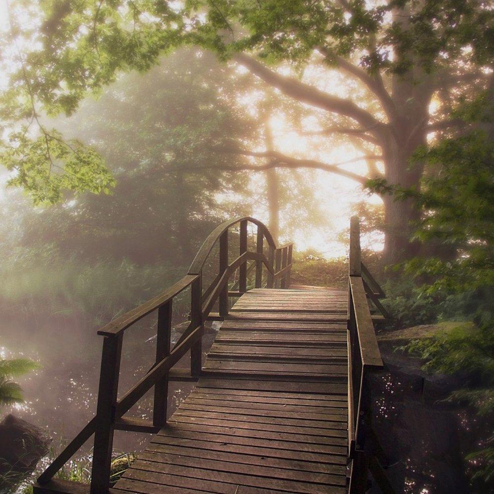 OMVÄG - Bokskogen i torsebro krutbrukI utkanten av Kristianstads Vattenrike ligger Torsebros Krutbruk inbäddat i en grön bokskog och med flera slingrande vattendrag. Tips inskickat av: www.instagram.com/dansade