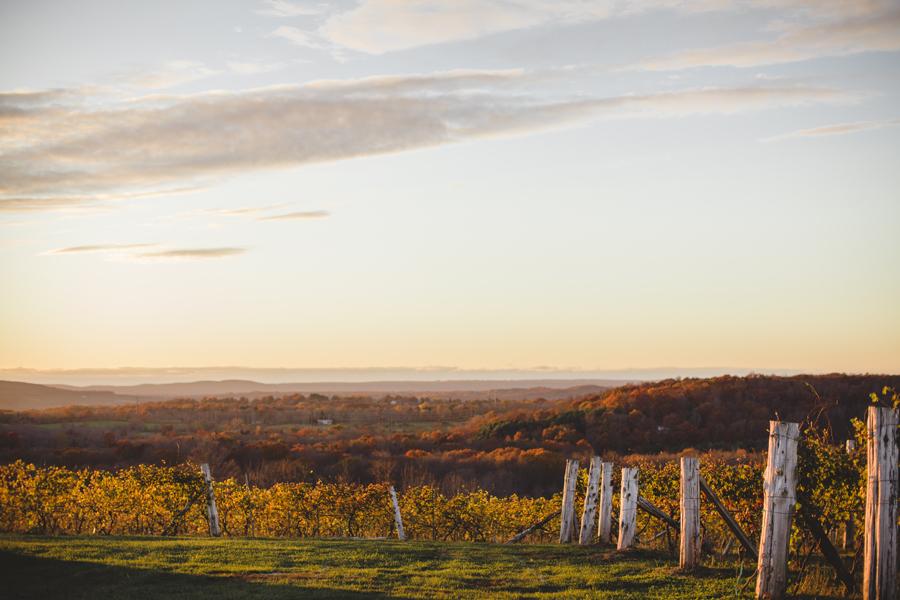 Gouveia Vineyard Wallingford Connecticut