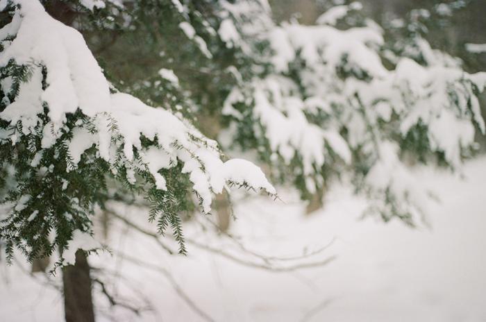 winter film