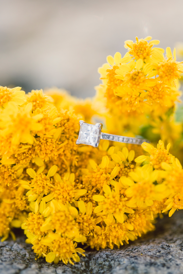 Harkness State Park Engagement