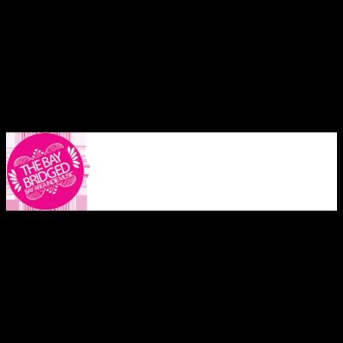 the bay bridged sq logo white.png