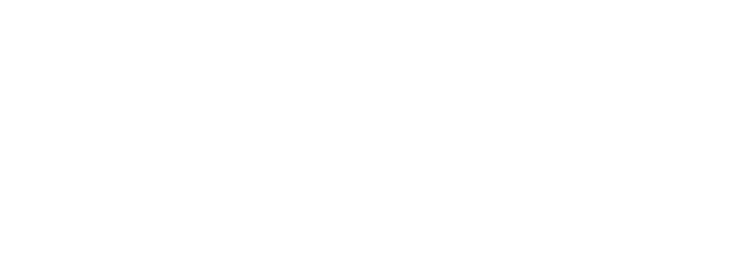 BLACK LOTUS MODELS