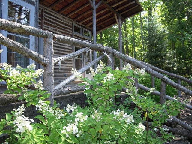 Wood Stair Case.jpg