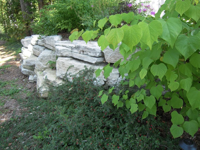 Rock Wall with Landscaping 2.jpg