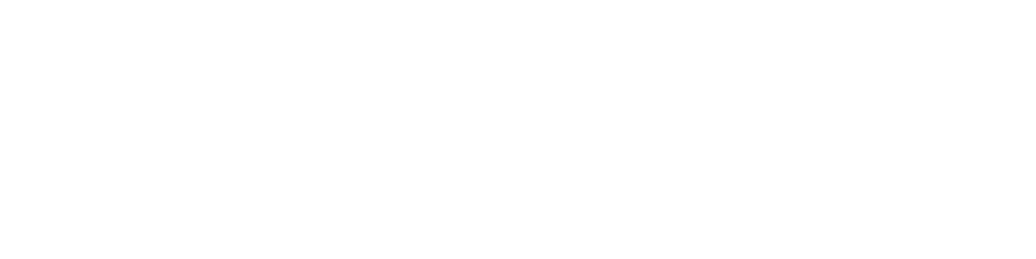 Wonderville logo