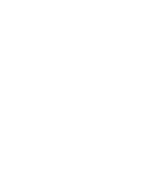 icon_wheelchair.png