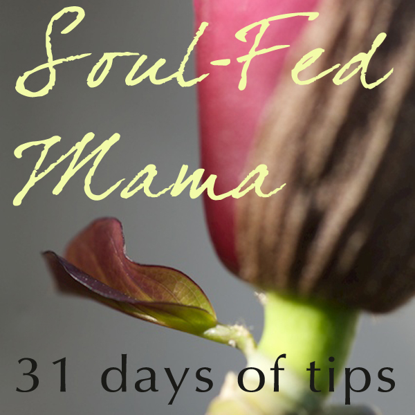 Soul-Fed Mama: 31 tips to getting grounded, inspired and energized in your mothering and your life