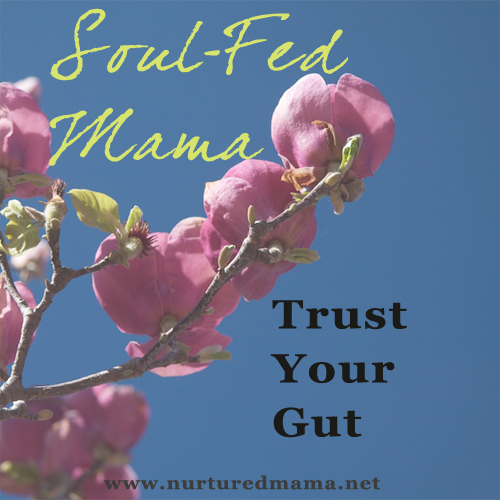 Trust Your Gut, part of the Soul-Fed Mama series on www.nurturedmama.net