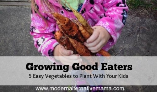 Grow Good Eaters - 5 easy vegetables to plant with your kids :: www.nurturedmama.net