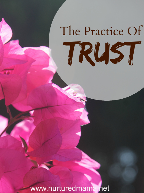 The Practice of Trust - when life feels uncertain, you need this. :: www.nuturedmama.net