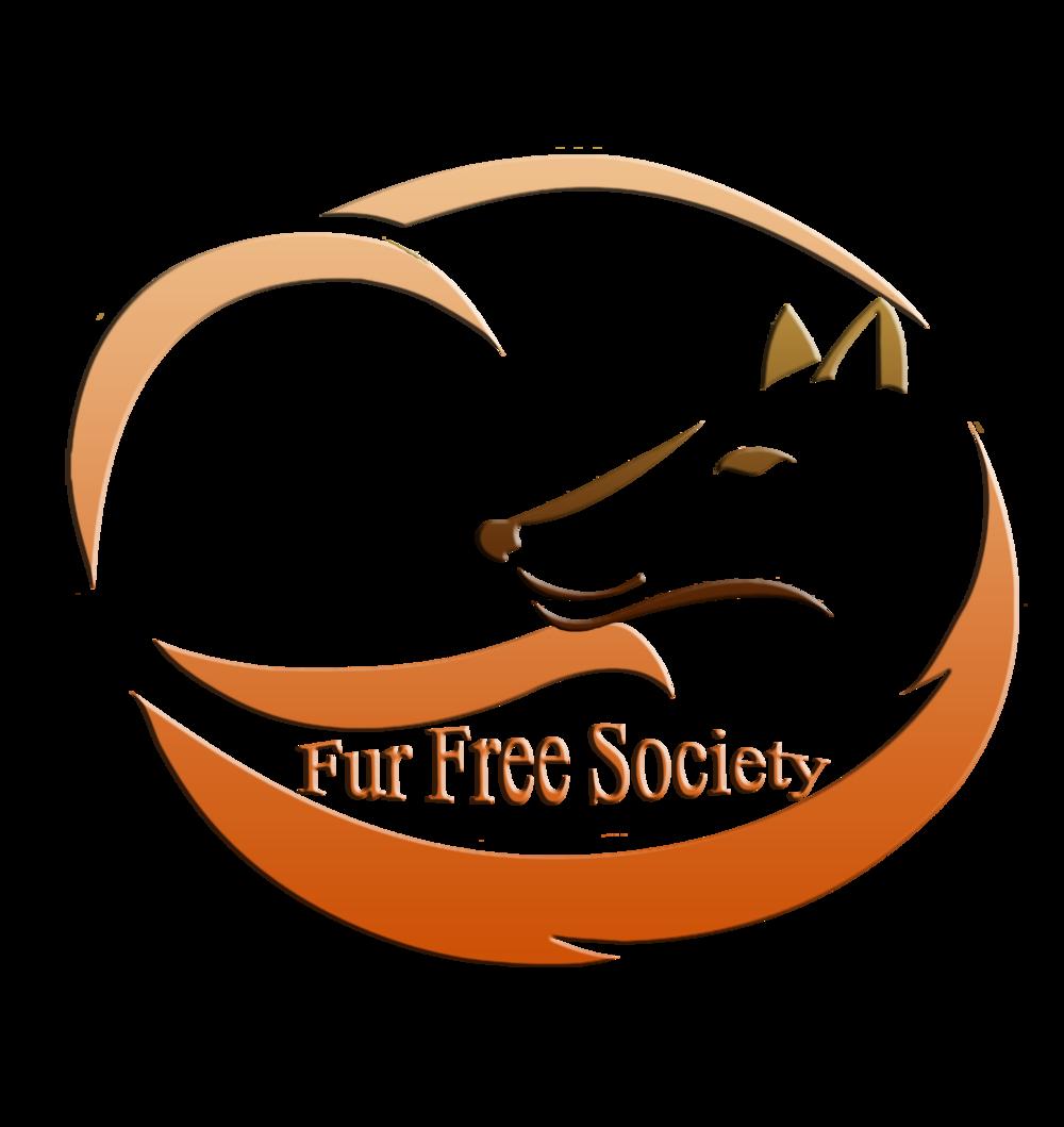 FFS logo (1).png