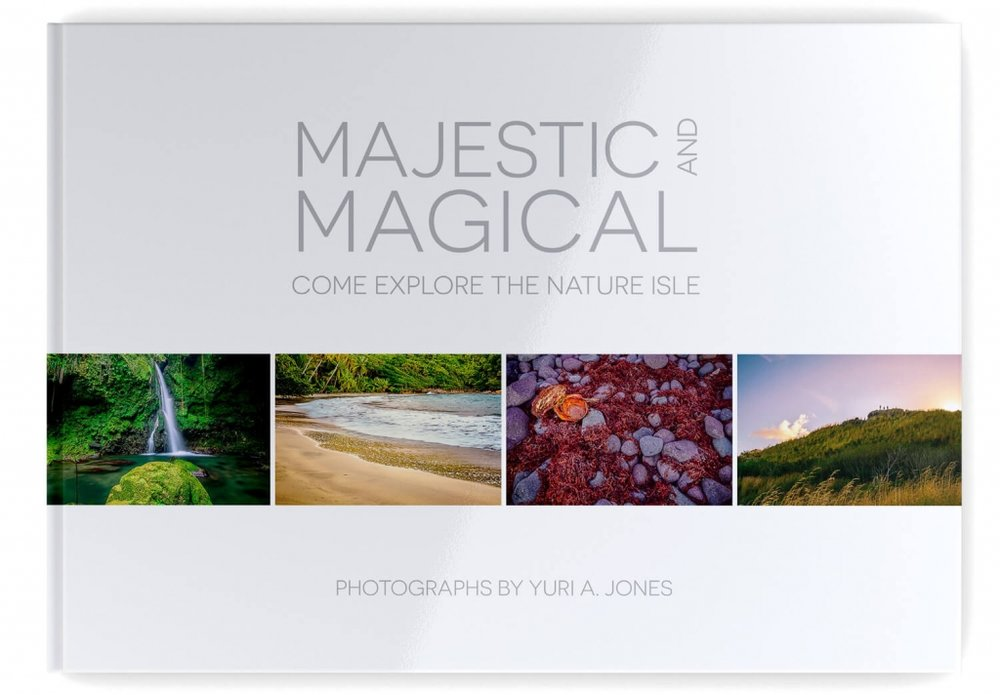 Book-Cover-majestic-and-magical.jpg