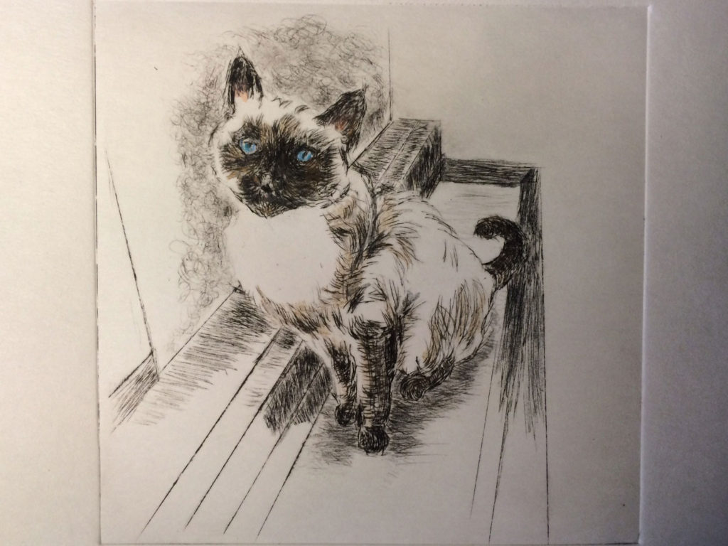 """The Quintessential Lily Cat,"" a drypoint etching by L.S. King. © 2016. L.S. King"