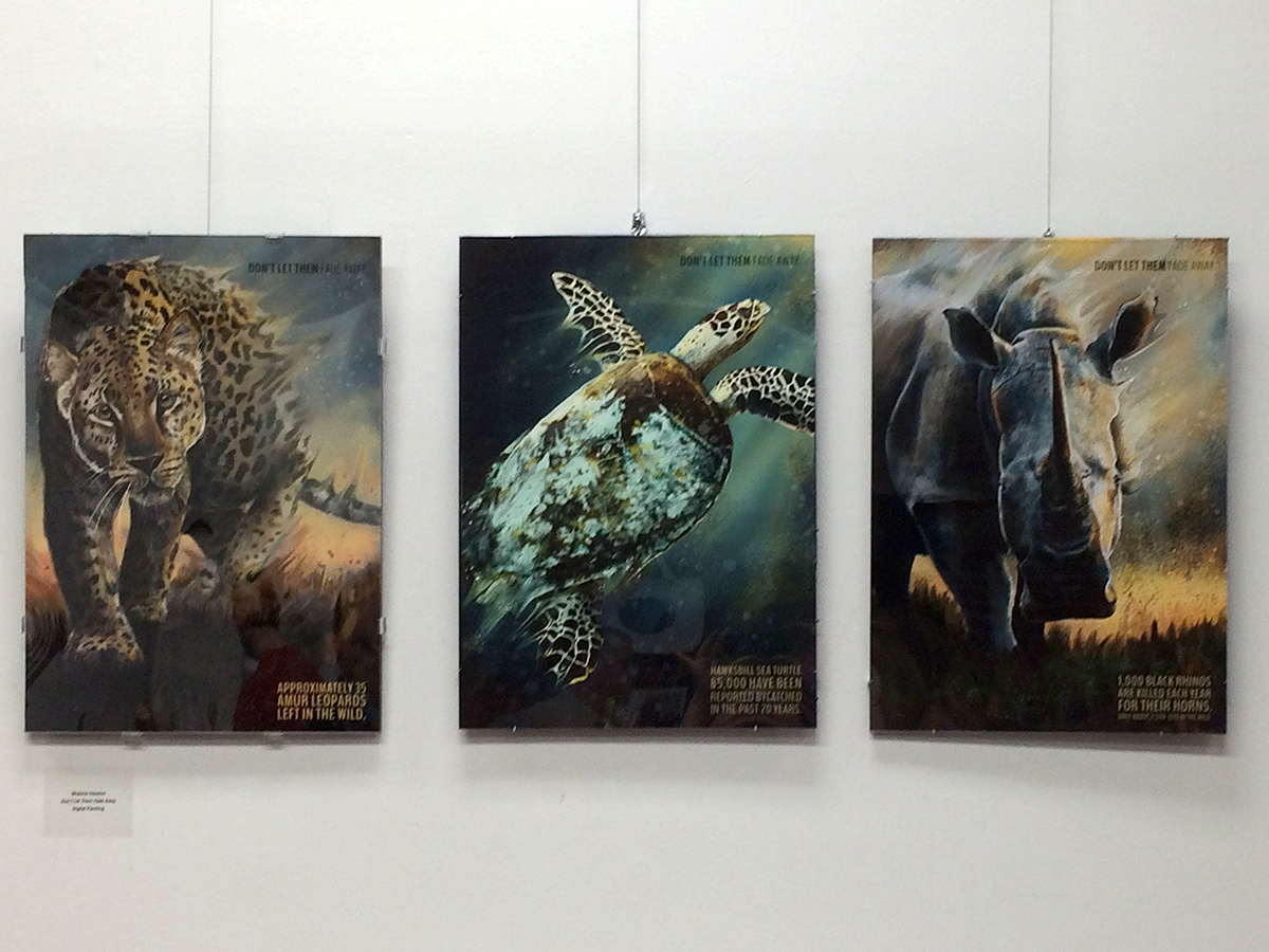 Tigers and turtles and rhinoceros by Shawna Hession