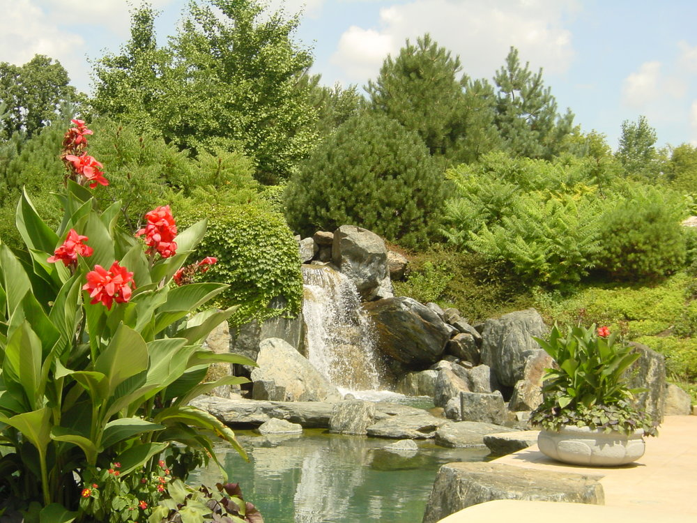 waterfall_and_red_flowers.jpg
