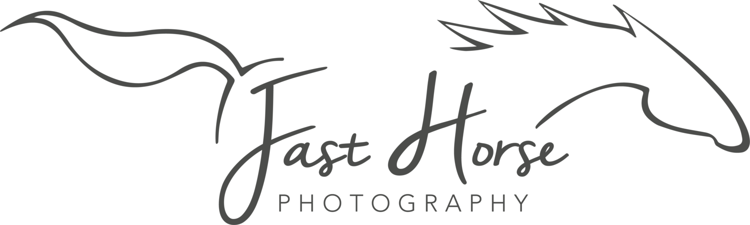 Fast Horse Photgraphy