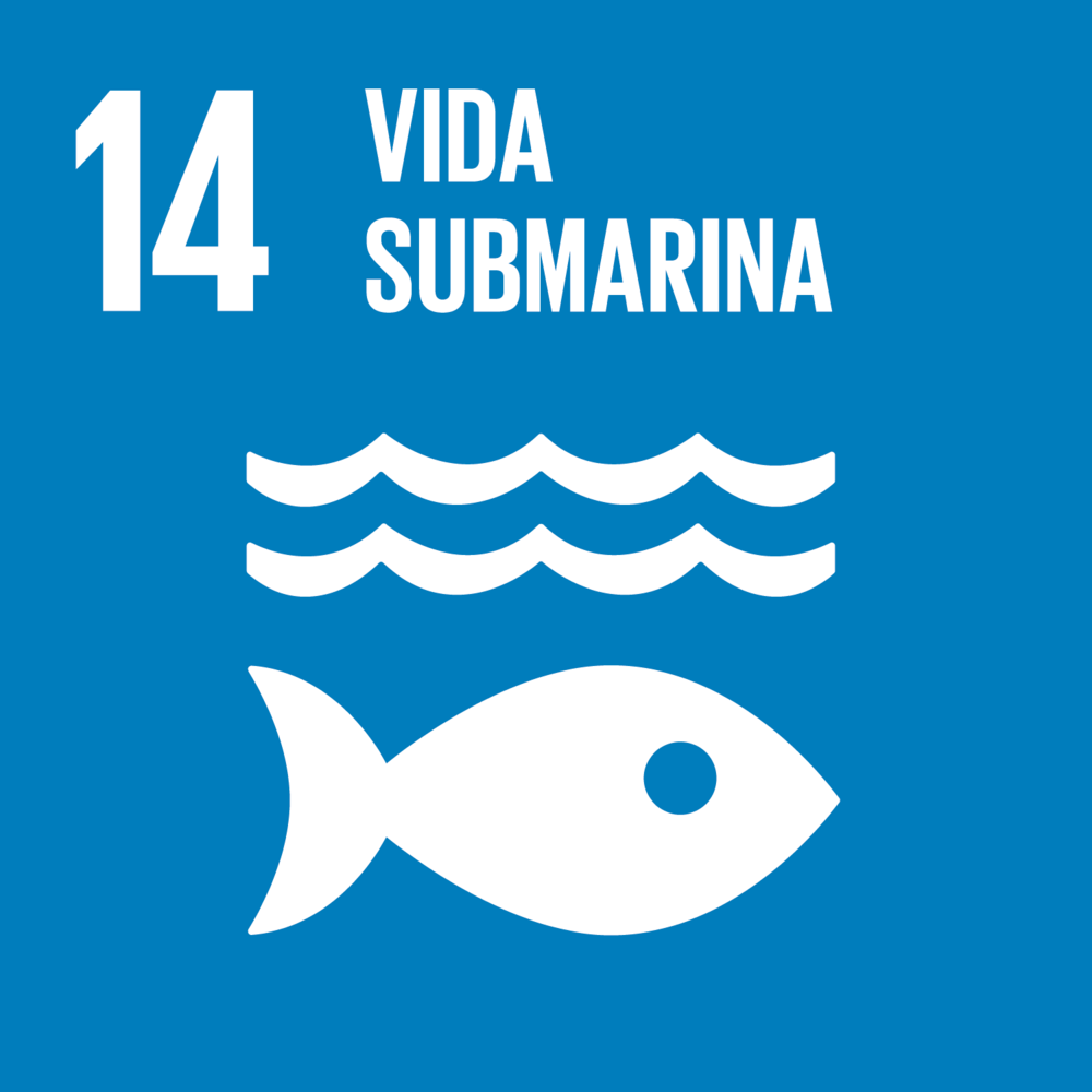 S_SDG goals_icons-individual-rgb-14.png