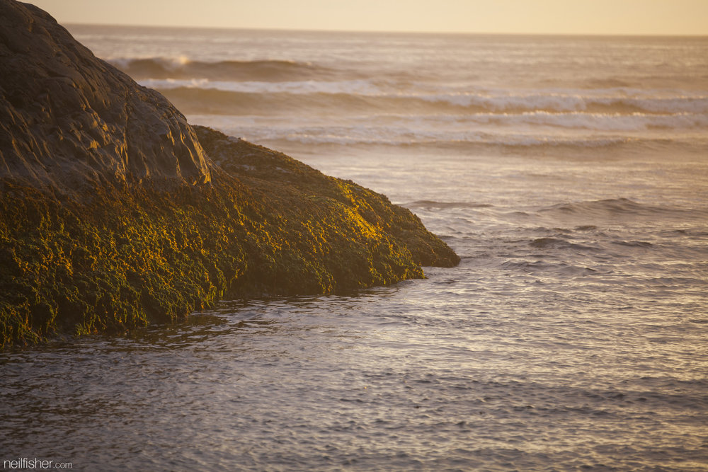 A photo of nothing in particular. The warm colour temperature of the setting sun cast along the rocks of Green Point allowed for some great dynamic range in this photo. EXIF 1/80sec f/2.8 ISO200 200mm