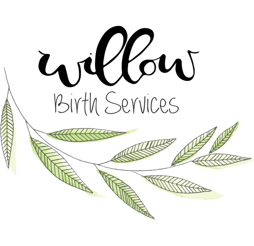 Willow Birth Services