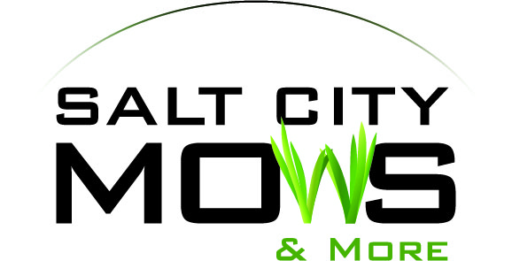 Salt City Mows and More