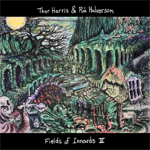 """New record - Thor Harris and Rob Halverson create """"Fields of Innards 3"""" for 2019 release by Joyful Noise Records."""