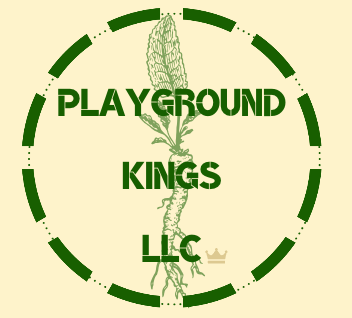 PLAYGROUND KINGS