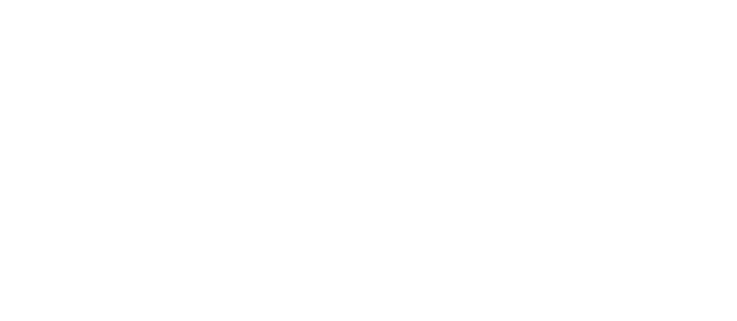 The Emerging Designers