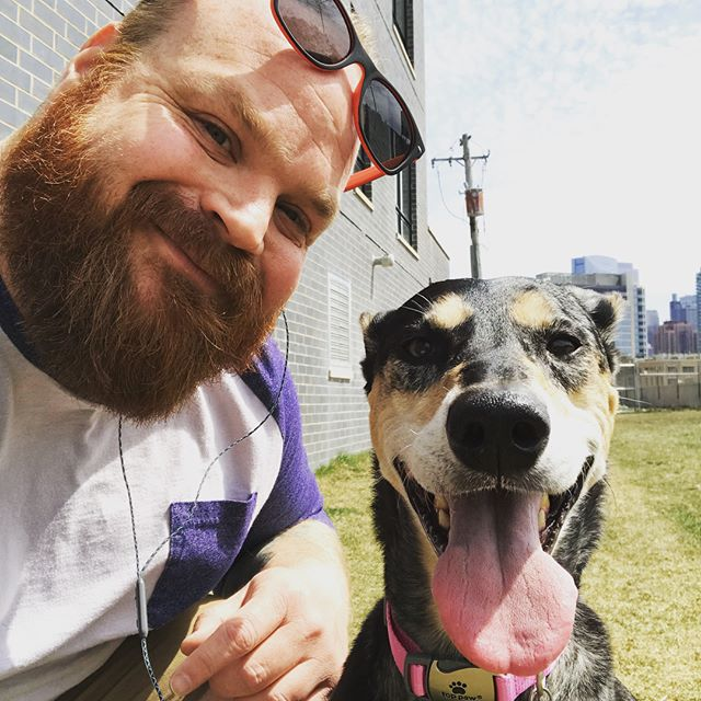 What a great day with the Windy City Pooch family! Days like today made the switch from the corporate world to dog walking the best decision I've ever made. I ❤️my clients and their humans! . . . #wcpfamily #dogsofchicago #pupsofriverwest #dogsofricerwest #dogsofedgewater #pupsofedgewater #dogsoflincolnpark #pupsoflincolnpark #pupsofinstagram #dogsofinstagram #pupsofchicago #doggos #puppers #handsomedog #dogsofchicago #chicagodogs #pupstagram #instapets #pets #dogs #instadogs #petstagram #dogstagram #dogsofinstagram #rescuedogsofchicago #rescuedogs