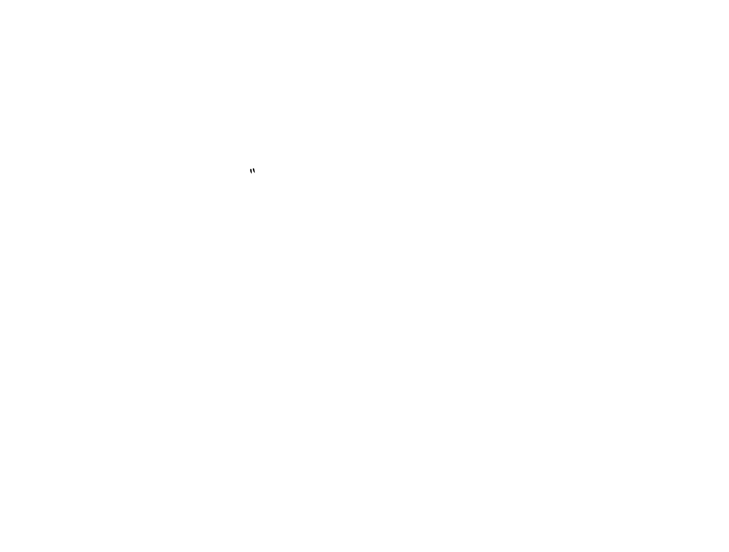 Flying Pig Adventure Company