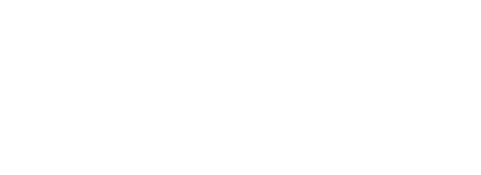 Karlin Real Estate