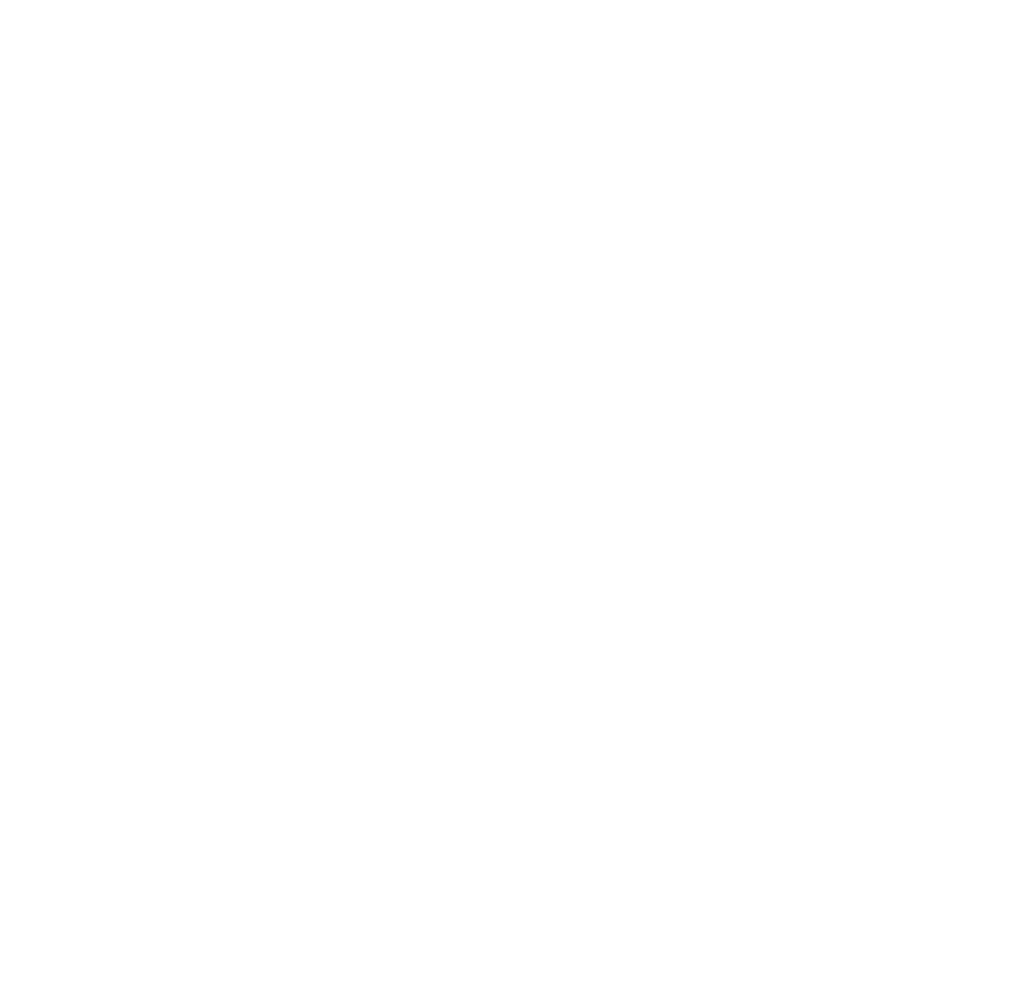 TROUBLEMAKER'S RIOT