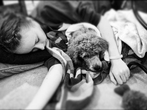 Sleepinggirls2012