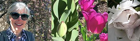Exploring the gardens, spring 2017.