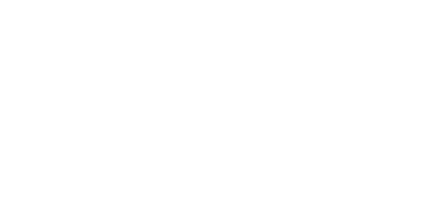 Virtual CFO Solutions Inc