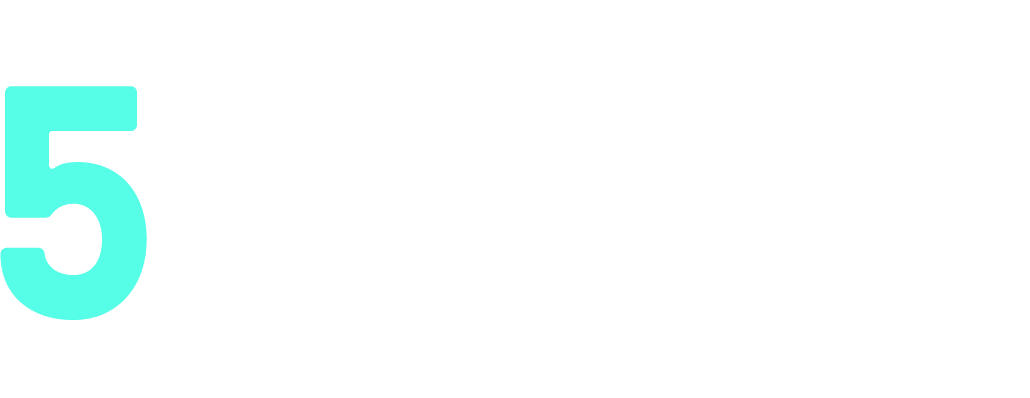 Five Borough Future