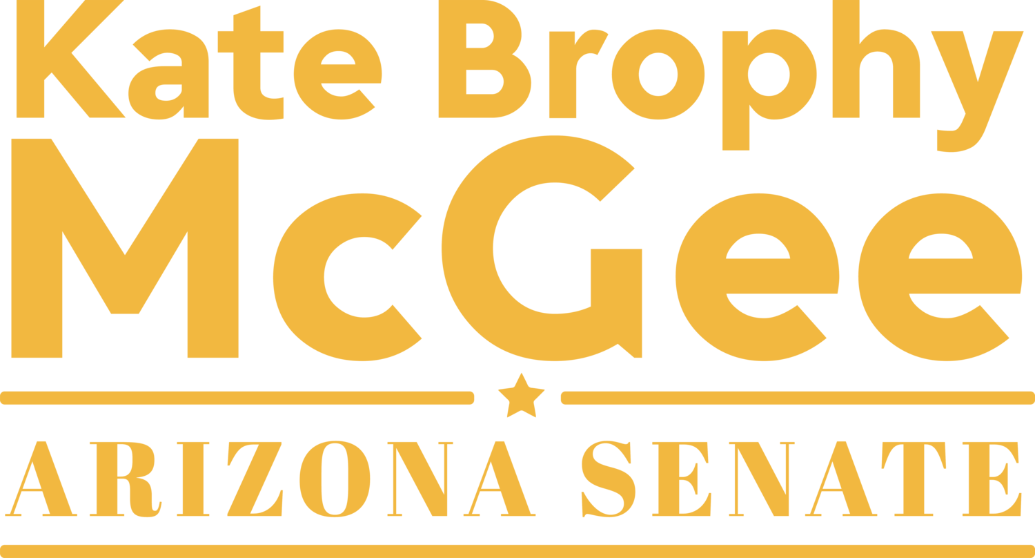 Arizona State Senator Kate Brophy McGee