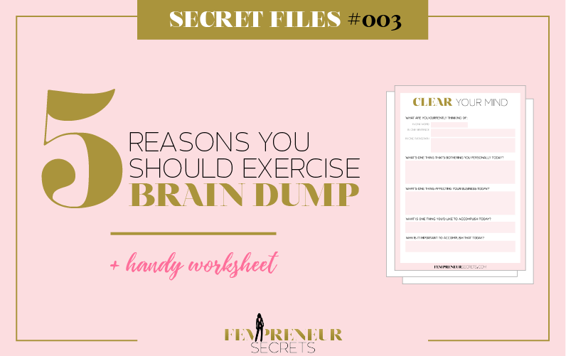 picture about Brain Dump Worksheet called Solution Document #003: 5 Good reasons Why By yourself Should really Health and fitness Intellect