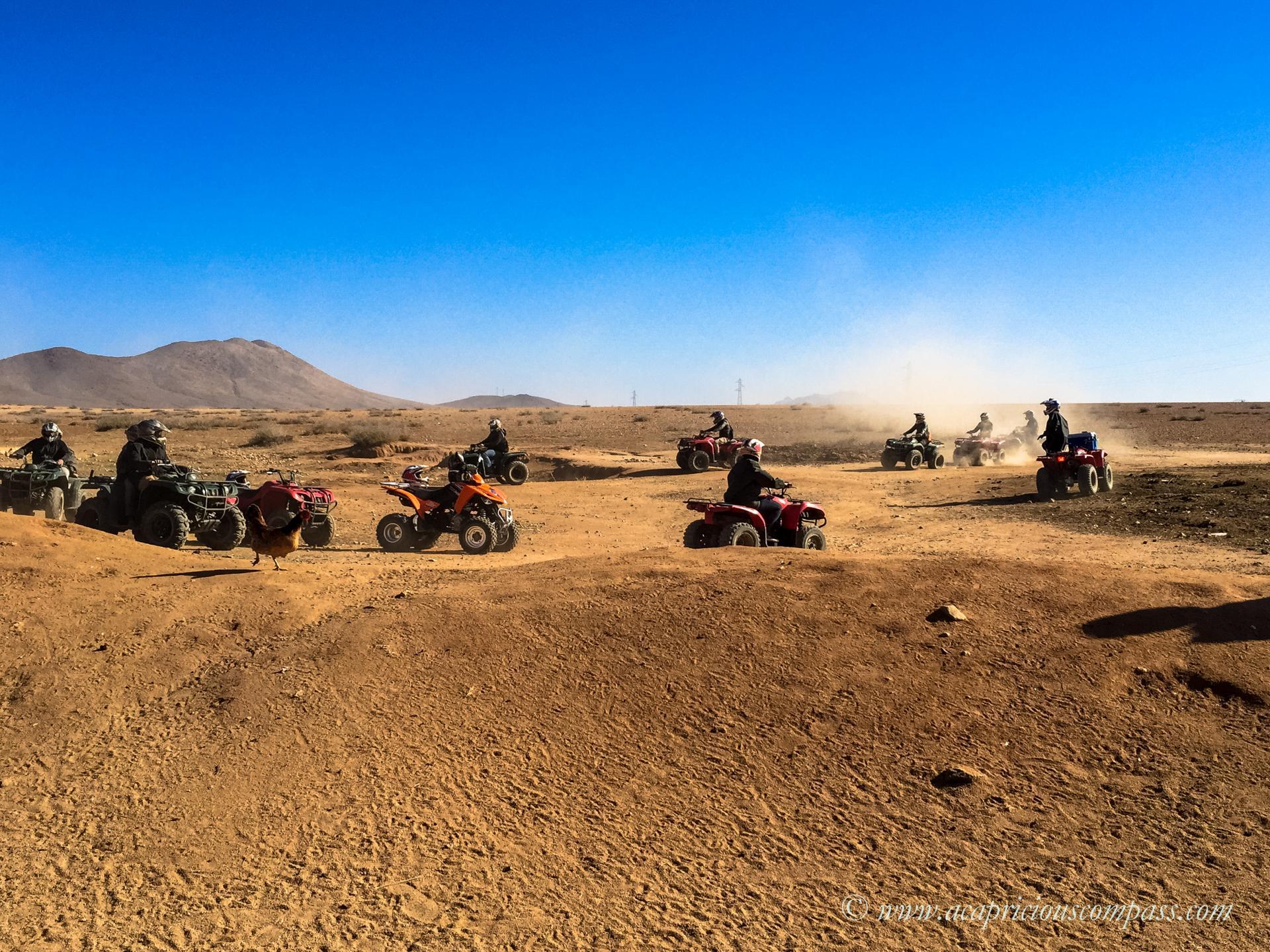 top things to do in Marrakech quad biking